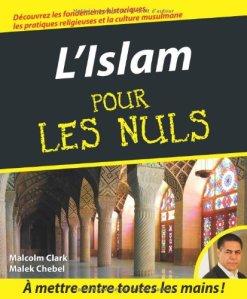M. Clark, M. Chebel, L'Islam pour les nuls, 2008